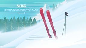 Winter sports - alpine skiing. Sportsman ski slope down from the mountain. Vector illustration. EPS 10 Royalty Free Stock Photography