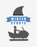 Winter sports design Stock Images