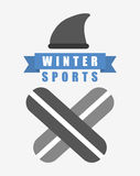 Winter sports design Royalty Free Stock Images