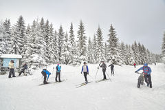 Winter sports enthusiasts on trails intersection. Stock Photo