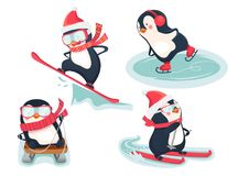 Active penguins in winter. Winter sports icon. Active penguins in winter vector illustration. Sports icon isolated Royalty Free Stock Image