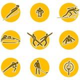 Winter sports icon set. Olimpic winter sports icons set on the white Stock Photos