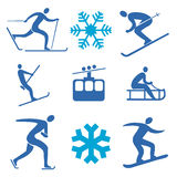 Winter sports icons. Set of  icons representing winter sports. Vector illustration Royalty Free Stock Photos