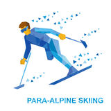 Winter sports - para-alpine skiing. Disabled skier running down Royalty Free Stock Image