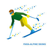 Winter sports - para-alpine skiing. Disabled skier running downh Royalty Free Stock Photos
