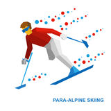Winter sports - para-alpine skiing. Disabled skier running downhill Royalty Free Stock Photography