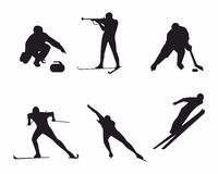 Winter sports. Vector illustration of a winter sports Stock Image