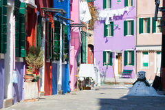 Between winter and spring, Burano island Royalty Free Stock Image