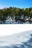 Winter/spring forest with ornament on frozen lake. Outdoors. Royalty Free Stock Photo