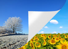 Winter and spring landscape. Concept of change season Royalty Free Stock Photo