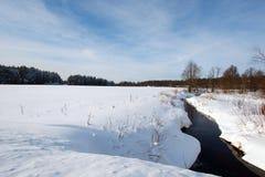 Winter or spring landscape Stock Image