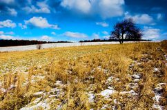 Winter - spring meadow. Winter - spring sunny meadow with blue sky and clouds stock images