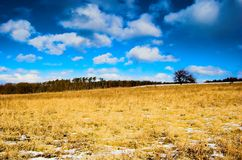 Winter - spring meadow. Winter - spring sunny meadow with blue sky and clouds royalty free stock image