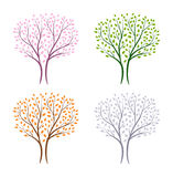 Winter,spring,summer and autumn tree Royalty Free Stock Images