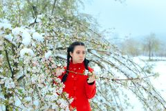Surprised Girl By Snow Covering Spring Flowers in Blossoming Tree royalty free stock photo