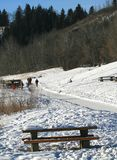 Winter-Spur Stockbild