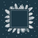Winter square frame with silhouettes of different conifer trees branches Royalty Free Stock Image