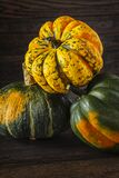 Winter Squash Royalty Free Stock Images