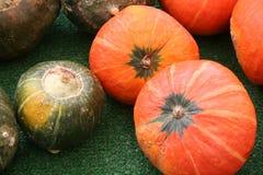 Winter Squash. Green and orange winter squash at a farmer's market Stock Image