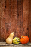 Winter squash and barn wood Royalty Free Stock Photos