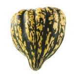 Winter Squash Isolated. Green and yellow winter squash isolated on white background royalty free stock photography