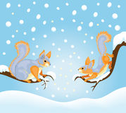 Winter squirrels Royalty Free Stock Images