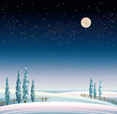 Winter starry landscape Stock Image