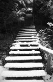 Winter steps Stock Images