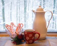 Winter Still Life Royalty Free Stock Image