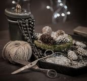 winter still-life close-up dark bokeh background royalty free stock photo