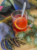 Winter still life hot red tea with lemon woollen scarf and silve. R spruce tree branches on wooden desk Stock Images