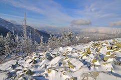 Winter stone hillside. Stock Photos