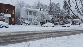 Winter Storm Royalty Free Stock Image