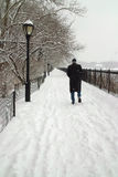 Winter Storm, Central Park, New York USA stock photography