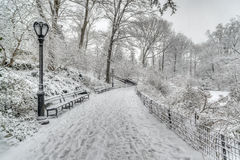 Winter storm Central Park, New York City Royalty Free Stock Image