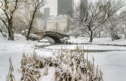 Winter storm Central Park, New York City Royalty Free Stock Photo