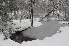Winter Storm Stock Image