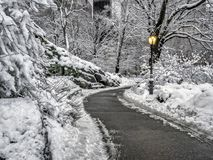 Central park in winter after snow storm Royalty Free Stock Image
