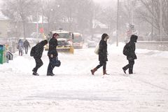 Winter storm hits Toronto Royalty Free Stock Photography