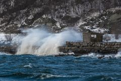 Breaking waves during stormy day in Trondheim, Norway royalty free stock photography