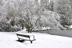 Winter storm in a park Stock Image