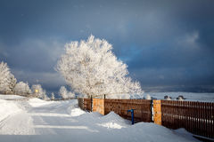 Winter Storm. A sunray catch in a winter storm in Marisel, Cluj county, Romania Stock Photo