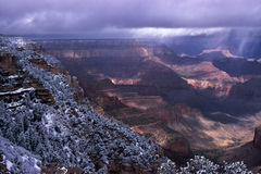 Winter Storm on West Rim of the Grand Canyon. Shrubs and stunted trees frosted with snow fringe the edge of the West Rim of the Grand Canyon.  Canyon walls fade Royalty Free Stock Images
