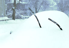 Winter Storm Stock Photography
