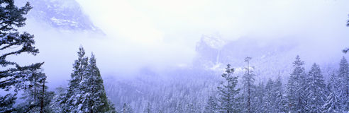 Winter storm in Yosemite, California Stock Photography