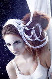 Winter story Royalty Free Stock Photography