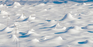 Winter, straw partly covered with snow Royalty Free Stock Photography