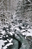 Winter stream Royalty Free Stock Images