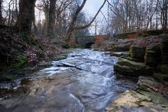 A Winter Stream Royalty Free Stock Images