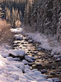Winter Stream. The lower Maligne River flows through Jasper National Park, Alberta, Canada in mid winter royalty free stock photos